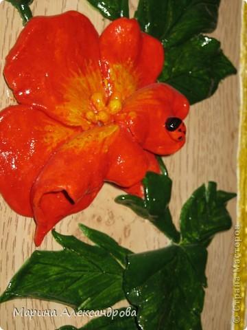 Здравствуйте дорогие мастерицы! Сегодня хочу показать вам подарочки к женскому дню для сестренки и похвастушки...это вот такой вот топиарий...в оранжевых тонах, для её прихожей, прихожая в оранжевом цвете, большая..думаю на комоде найдется для моего деревца место!!! фото 3