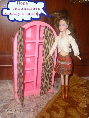 Новый шкаф для куклы. фото 8