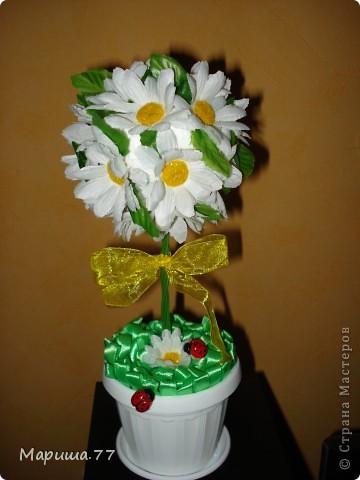 Новенькие деревца к  весеннему празднику! фото 2
