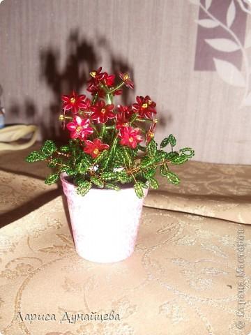 Налепила я цветочков на подарочки. Один из красненьких уже получила Лариса88 по весенней игре. Остальные буду сегодня раздавать фото 4