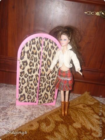 Новый шкаф для куклы. фото 1