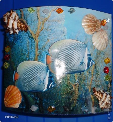 """вот такие """"аквариумы"""" у меня получились, в домике пакеты вставляются с двух сторон фото 6"""