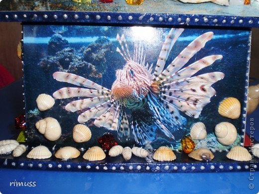 """вот такие """"аквариумы"""" у меня получились, в домике пакеты вставляются с двух сторон фото 5"""