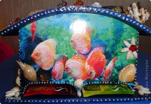 """вот такие """"аквариумы"""" у меня получились, в домике пакеты вставляются с двух сторон фото 4"""