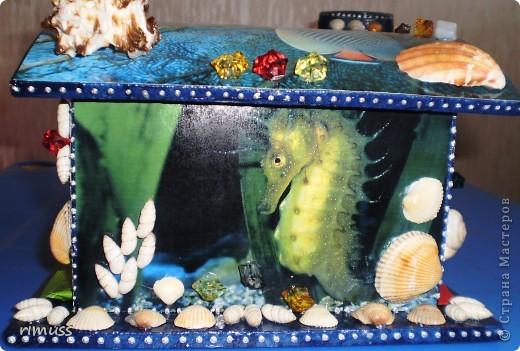 """вот такие """"аквариумы"""" у меня получились, в домике пакеты вставляются с двух сторон фото 3"""