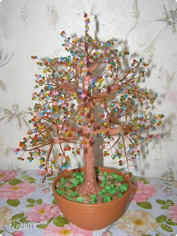 Радужное деревце фото 2