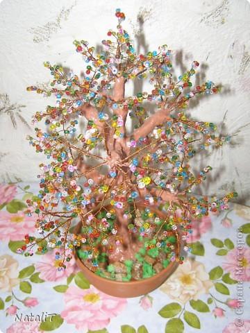 Радужное деревце фото 3