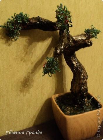 Моё первое дерево.... Я им горжусь (хотя не всем оно нравиться)... фото 6