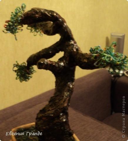 Моё первое дерево.... Я им горжусь (хотя не всем оно нравиться)... фото 2