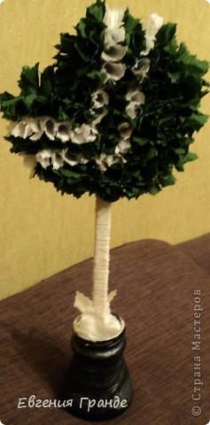 Каждое дерево было сделано в подарок... фото 6