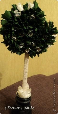 Каждое дерево было сделано в подарок... фото 7