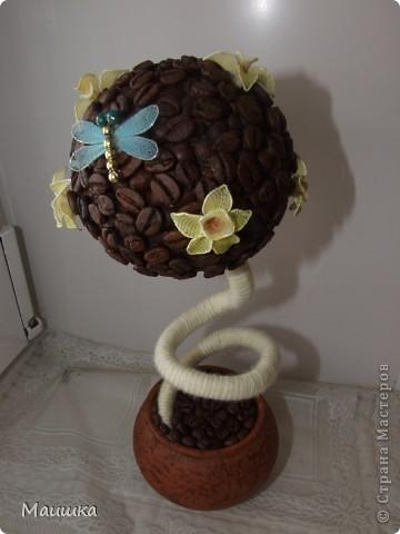 Кофейное дерево с цветами ванили :) подарок маме на 8е марта. Цветочки со своим ароматом - в сердцевину каждого  налито по капельке ванильного масла. фото 2