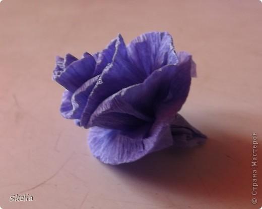 Для работы мне  необходимо было освоить технику создания шаров из бумажных роз. Изучив большое колличество литературы и интернет советов, я нашла самый быстрый и доступный способ, и на мой взгляд очень красивый фото 9