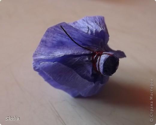 Для работы мне  необходимо было освоить технику создания шаров из бумажных роз. Изучив большое колличество литературы и интернет советов, я нашла самый быстрый и доступный способ, и на мой взгляд очень красивый фото 10