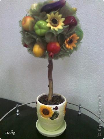 Новенькое деревце. Кухонный вариант. Разные овощи и фрукты, в вазоне чай. фото 1