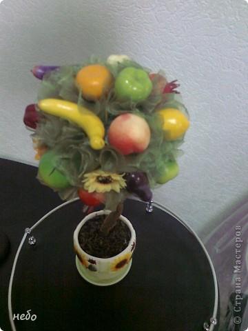 Новенькое деревце. Кухонный вариант. Разные овощи и фрукты, в вазоне чай. фото 2