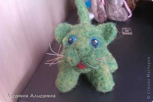 Инопланетный кот фото 1