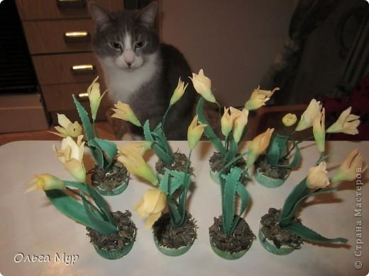 Вот такие весенние цветочки у меня получились на скорую руку!