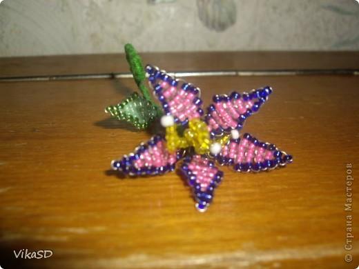 Квіточка для сестри(Робота мої рідненької сестрички Олюсі ) фото 2