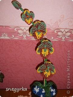 вот такая орхидея у меня получилась