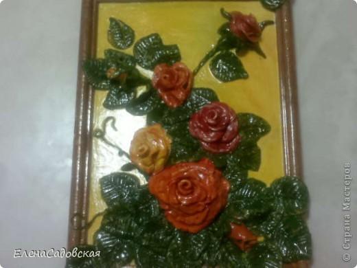 Вот такие розыт у меня получились. фото 1