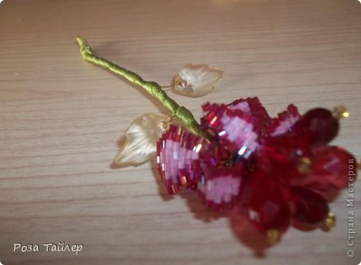 Аленький цветочек фото 1