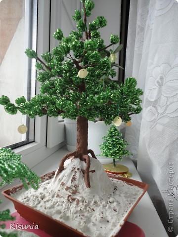 Моё первое дерево фото 3