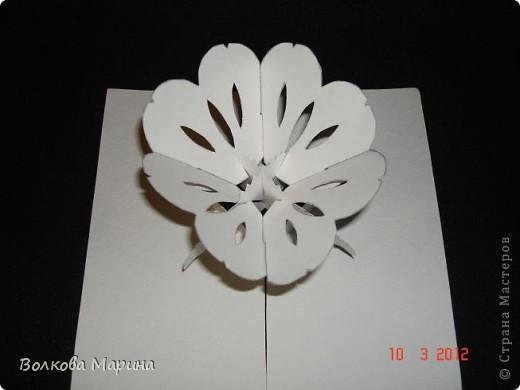 Это разновидность киригами. Из бумаги делаются объёмные изделия (имеющие сетчатую структуру), при этом их можно легко сложить и они будут плоские как лист бумаги. Так же легко восстанавливают свой объёмный вид. Очень удобно использовать в поздравительных открыточках. Я решила собрать коллекцию. Можно сказать это образцы для будующих работ.  фото 18