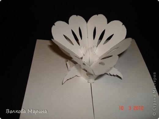 Это разновидность киригами. Из бумаги делаются объёмные изделия (имеющие сетчатую структуру), при этом их можно легко сложить и они будут плоские как лист бумаги. Так же легко восстанавливают свой объёмный вид. Очень удобно использовать в поздравительных открыточках. Я решила собрать коллекцию. Можно сказать это образцы для будующих работ.  фото 20