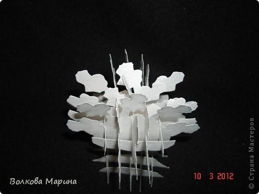 Это разновидность киригами. Из бумаги делаются объёмные изделия (имеющие сетчатую структуру), при этом их можно легко сложить и они будут плоские как лист бумаги. Так же легко восстанавливают свой объёмный вид. Очень удобно использовать в поздравительных открыточках. Я решила собрать коллекцию. Можно сказать это образцы для будующих работ.  фото 35