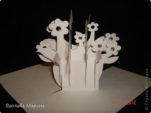 Это разновидность киригами. Из бумаги делаются объёмные изделия (имеющие сетчатую структуру), при этом их можно легко сложить и они будут плоские как лист бумаги. Так же легко восстанавливают свой объёмный вид. Очень удобно использовать в поздравительных открыточках. Я решила собрать коллекцию. Можно сказать это образцы для будующих работ.  фото 44