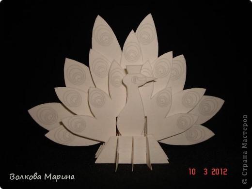 Это разновидность киригами. Из бумаги делаются объёмные изделия (имеющие сетчатую структуру), при этом их можно легко сложить и они будут плоские как лист бумаги. Так же легко восстанавливают свой объёмный вид. Очень удобно использовать в поздравительных открыточках. Я решила собрать коллекцию. Можно сказать это образцы для будующих работ.  фото 47