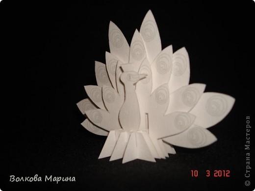 Это разновидность киригами. Из бумаги делаются объёмные изделия (имеющие сетчатую структуру), при этом их можно легко сложить и они будут плоские как лист бумаги. Так же легко восстанавливают свой объёмный вид. Очень удобно использовать в поздравительных открыточках. Я решила собрать коллекцию. Можно сказать это образцы для будующих работ.  фото 48