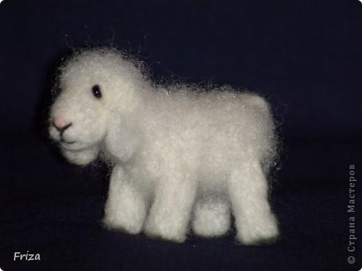 Вот родилась овечка.  А началось всё с того, что я в наполнителе для подушки нашла волнистые волокна, не распушённые. И первое что пришло мне в голову это овечка. И я решила попробовать. Высота 5 см,длина 6 см. фото 6