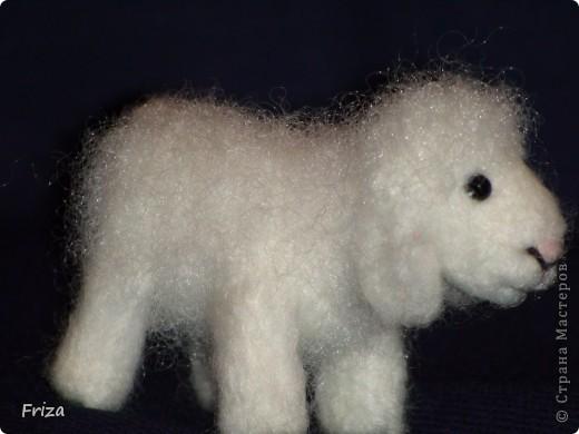 Вот родилась овечка.  А началось всё с того, что я в наполнителе для подушки нашла волнистые волокна, не распушённые. И первое что пришло мне в голову это овечка. И я решила попробовать. Высота 5 см,длина 6 см. фото 5