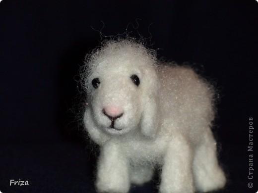 Вот родилась овечка.  А началось всё с того, что я в наполнителе для подушки нашла волнистые волокна, не распушённые. И первое что пришло мне в голову это овечка. И я решила попробовать. Высота 5 см,длина 6 см. фото 4