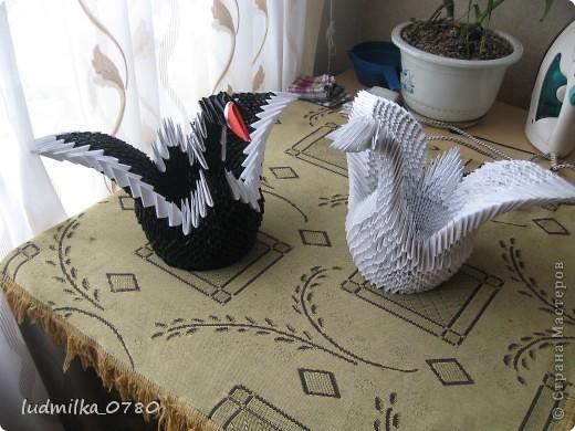 мои первые лебеди оригами фото 1