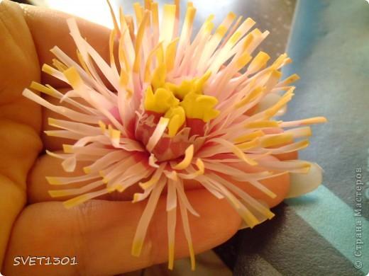Мастер-класс Лепка Древовидный пион МК Фарфор холодный фото 10