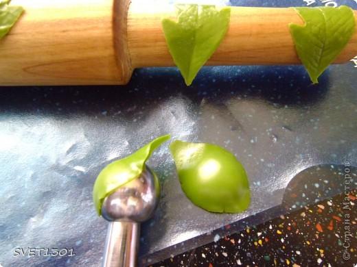 Мастер-класс Лепка Прдолжение МК по лепке древовидного пиона из ХФ  Фарфор холодный фото 6
