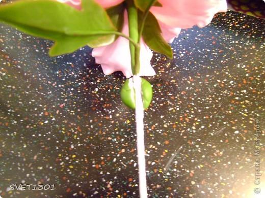 Мастер-класс Лепка Прдолжение МК по лепке древовидного пиона из ХФ  Фарфор холодный фото 10