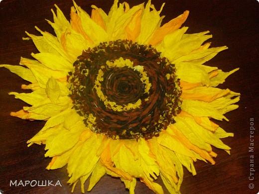 креповая бумага: двух желтых, коричневого, черного, двух зеленых - для листьев и листиков корзинки цветов. Лепестки из скрученных веревочек - я делала отдельные лепестки разного оттенка и из двойного цвета   фото 1