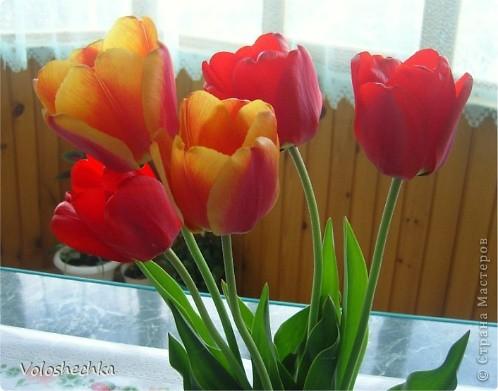 Привет всем моим гостям)  Перед вами еще одна моя работа - весенняя корзинка со сладкими тюльпанами, которую сделала в подарок.  фото 7