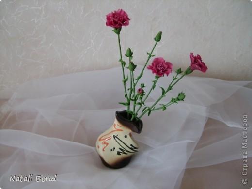 Доброго дня Всем!!!!Скуки ради просматривая страницы интерна,решила полюбоваться  маками,вот что из этого получилось......,гвоздику пробовала тоже ,но если честно мне не очень...,ну и орхидейки  так тоже...от скуки ,что получилось ...предлагаю прогуляться у меня!!!Приятного просмотра!!! фото 6