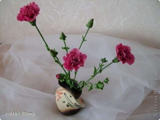 Доброго дня Всем!!!!Скуки ради просматривая страницы интерна,решила полюбоваться  маками,вот что из этого получилось......,гвоздику пробовала тоже ,но если честно мне не очень...,ну и орхидейки  так тоже...от скуки ,что получилось ...предлагаю прогуляться у меня!!!Приятного просмотра!!! фото 5