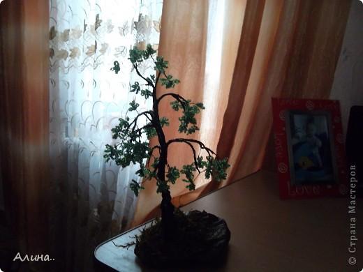 """И ещё несколько """"деревьев""""... фото 3"""