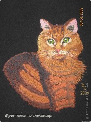 """Кот породы """"Пикси"""". Размер 20х29 см. 32 оттенка цвета. Авторская работа в единственном экземпляре.  фото 2"""