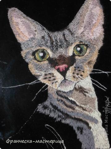 """Кот породы """"Пикси"""". Размер 20х29 см. 32 оттенка цвета. Авторская работа в единственном экземпляре.  фото 1"""