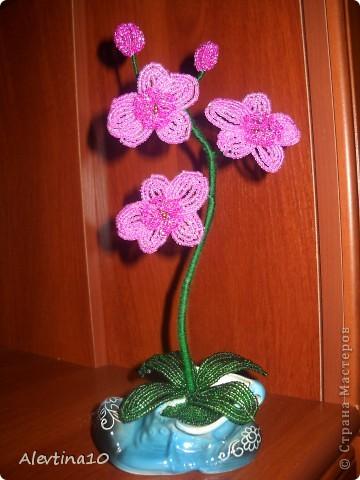 Сегодня у меня родилась вот такая орхидея высотой около 30см. Хочу показать как я ее делала. Возможно, в СМ уже есть МК по орхидеям, мне не попадались. Но если есть уже такой МК, то отзовитесь.  фото 1