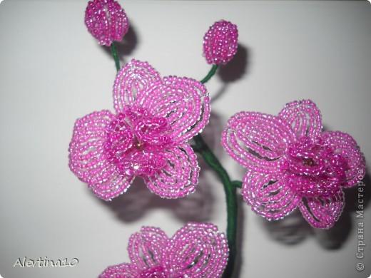 Мастер-класс Бисероплетение Орхидея из бисера МК Бисер фото 2