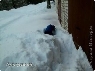 Всем привет! Меня зовут Боник! Вчера у нас выпало ооочень много снега и я и мои хозяева пошли чистить снег около гаража, я очень люблю ходить в гараж, там всегда такие большие кучи снега в которых я люблю рыть норы, ведь я же норная собака. фото 5